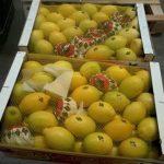 venta limon en españa